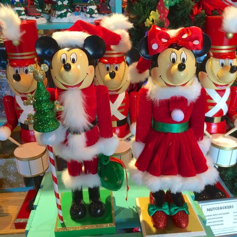 Walt Disney World – November 2014