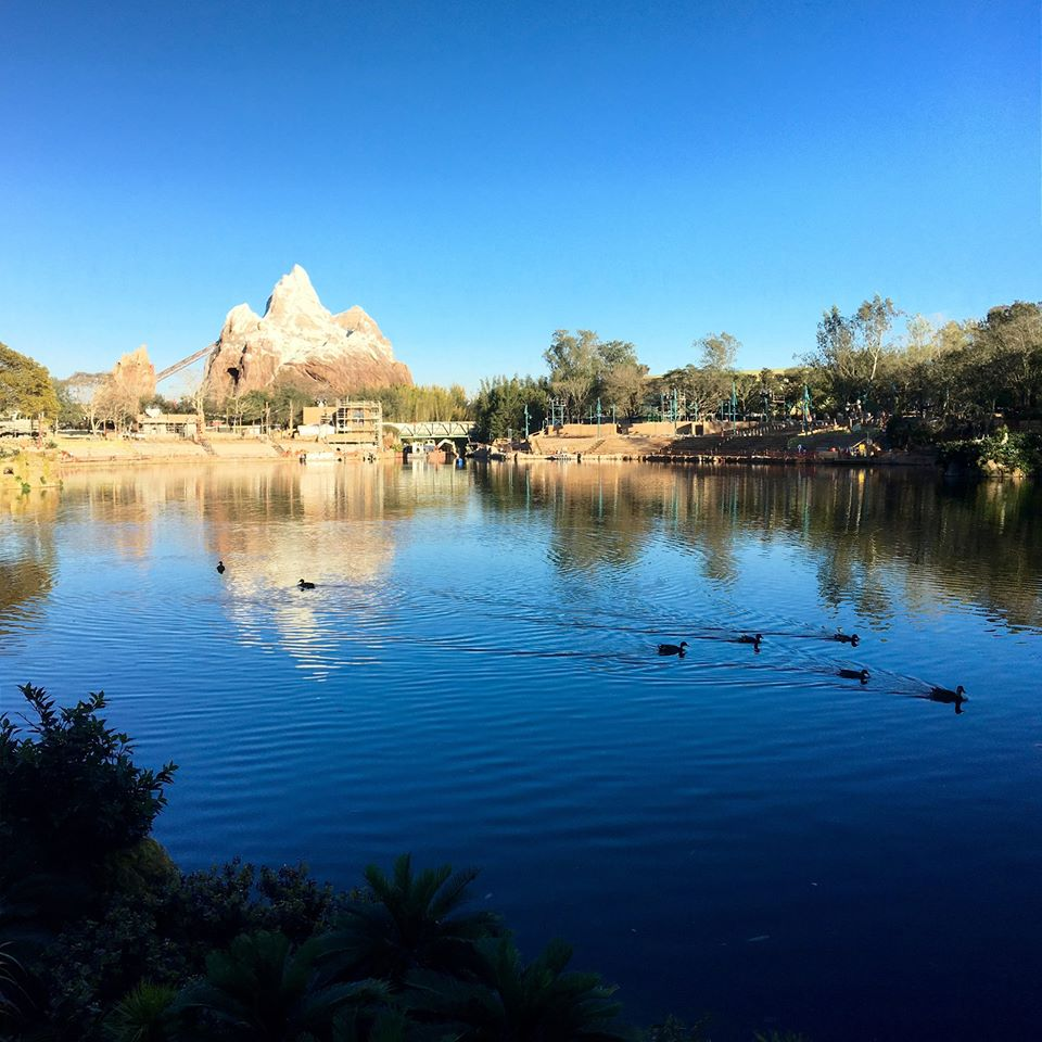 Walt Disney World – February 2016